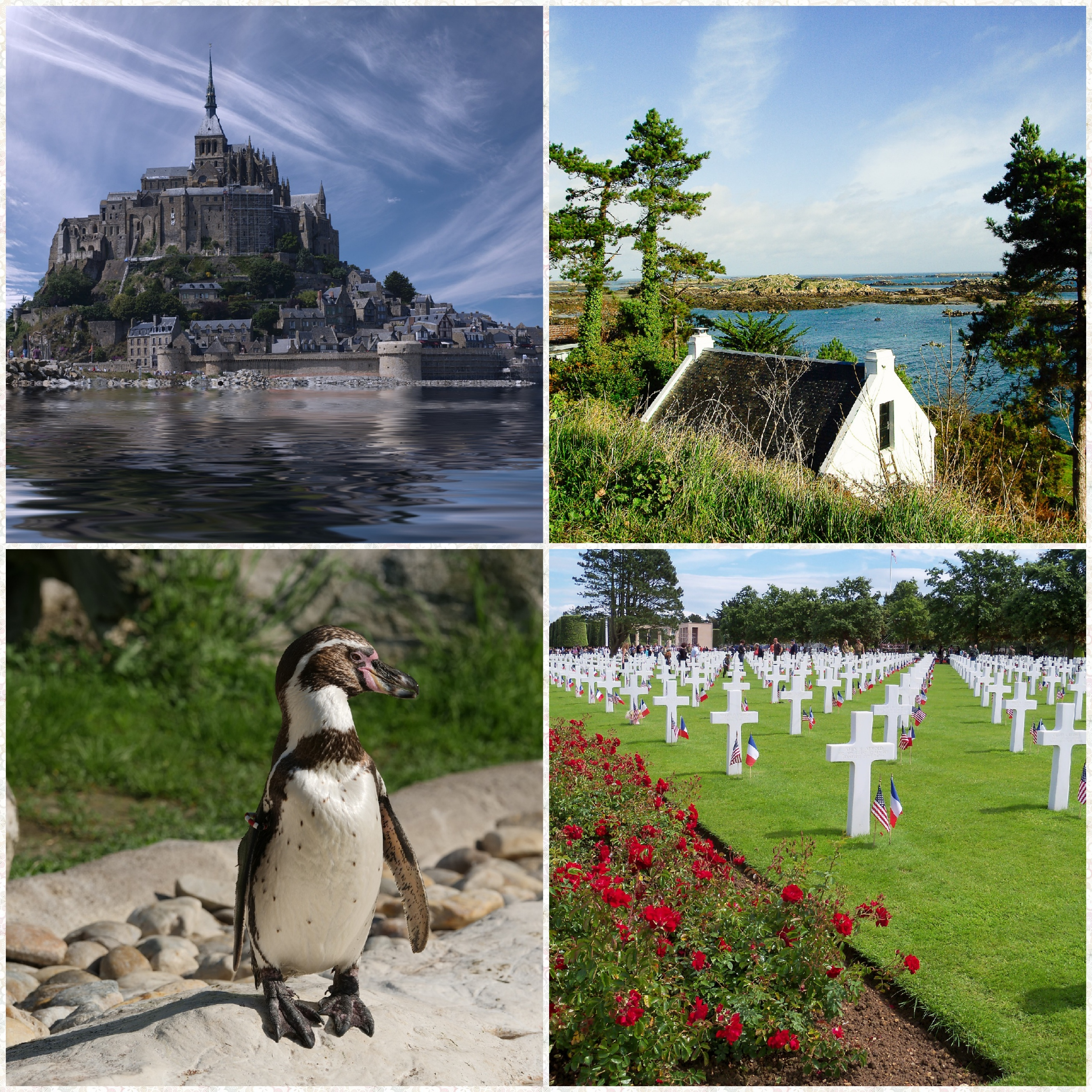 Location camping visite Manche